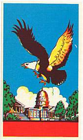 #ZLB010 - Eagle Flying over the Capitol Building Broom Label