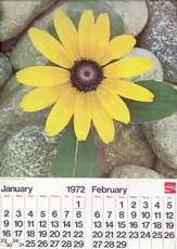 #CC218 - Scarce Large 1972 Coca Cola Error Calendar