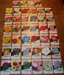 #CS340 - Set of 41 Different 10¢ Flower and Ornamental Seed Packs from the 1950s.