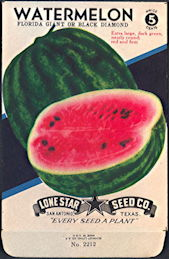 #CS356.905 - Brilliantly Colored Black Diamond Watermelon Lone Star 5¢ Seed Pack - As Low As 50¢ each