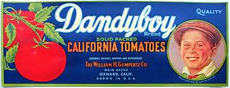 #ZLC227 - Dandyboy California Tomatoes Crate Label