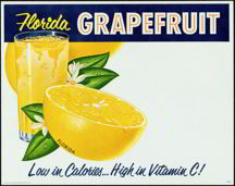 #SIGN038 - Group of 3 different Florida Grapefruit Signs