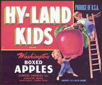 #ZLC185 - Hy-Land Kids Washington Apple Crate Label