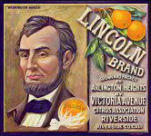 #ZLC114 - Lincoln Brand Sunkist Orange Crate Label