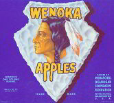 #ZLC129 - Wenoka Apple Crate Label