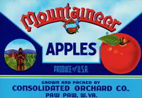 #ZLC171 - Mountaineer Apples Crate Label