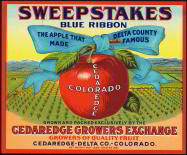 #ZLC137 - Rare and Very Old Sweepstakes Blue Ribbon Apple Crate Label