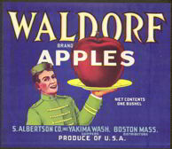 #ZLC196 - Waldorf Apple Crate Label