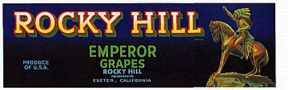 #ZLSG004 - Rocky Hill Grape Crate Label with Indian