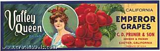 #ZLSG007 - Valley Queen Grape Crate Label