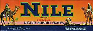 #ZLSG005 - Nile Grape Crate Label