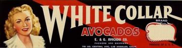#ZLCA*015 - White Collar Avocados Crate Lug Label