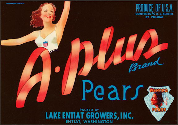 #ZLC441 - A-Plus Brand Pears Crate Label - Pinup