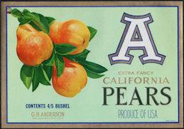 "#ZLC460 - ""A"" Extra Fancy California Pears Crate Label"