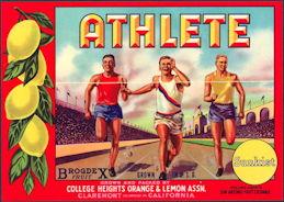 #ZLC262 - Athlete Brand Sunkist Lemon Crate Label