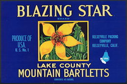 #ZLC398 - Blazing Star Mountain Bartletts Pear Crate Label
