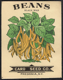 #CE154 - Very Early Black Wax Beans Card Seed Packet