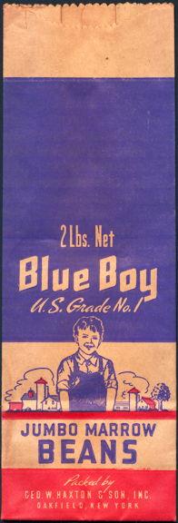 #CS073 - Blue Boy Kidney Beans Bag