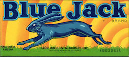 #ZLCA*067 - Scarce Blue Jack Melon Crate Label - Blue Jack Rabbit