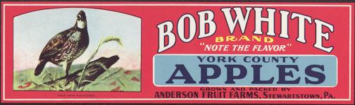 #ZLCA*006 - Bob White Apples Crate Label