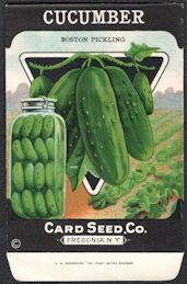 CE153 - Scarce Boston Pickling Cucumber Card Seed Packet - Pictures old Canning Jar