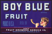#ZLCA*047 - Boy Blue Fruit Crate Label