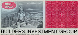 #ZZCE070 - Builders Investment Group Stock Certificate