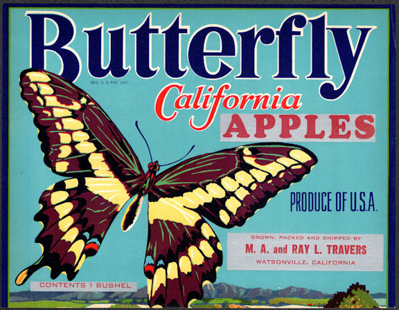 #ZLC456 - Butterfly California Apples Crate Label