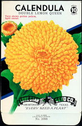 #CE003 - Double Lemon Queen Calendula Lone Star 10¢ Seed Pack - As Low As 50¢ each