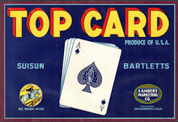 ZLSH018 - Group of 12 Top Card Suisun Bartletts Pear Crate Label - Ace of Spades