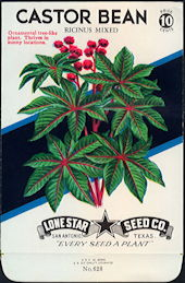 #CE005.1 - Group of 12 Ricinus Mixed Castor Bean Lone Star 10¢ Seed Packs