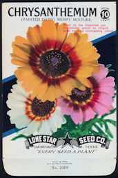 #CE006 - Brilliantly Colored Chrysanthemum Mixture Lone Star 10¢ Seed Pack - As Low As 50¢ each