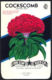 #CE007 - Brilliantly Colored Cockscomb Dwarf Red Lone Star 10¢ Seed Pack - As Low As 50¢ each