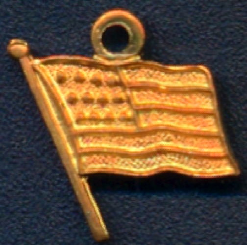 #BEADSC0290 - Group of 10 Copper American Flag Charms