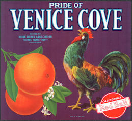 #ZLSH016 - Group of 12 Pride of Venice Cove Crate Labels with Rooster