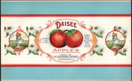 #ZLCA916 - Large Daisee Brand Apples Can Label