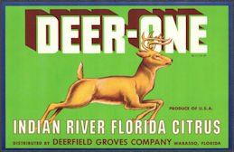 #ZLC468 - Deer-One Indian River Florida Citrus Crate Label - Wabasso, Florida