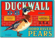 #ZLC229 - Duckwall Hood River Pears Crate Label
