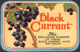 #ZBOT211 - Black Currant Jar Label