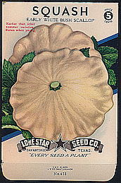 #CE077.1 - Group of 12 Brilliantly Colored Early White Bush Scallop Squash Lone Star 5¢ Seed Packs