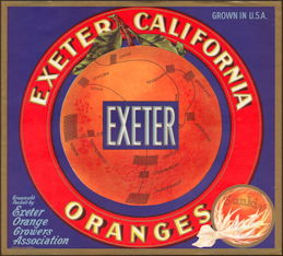 #ZLC089 - Exeter Sunkist Orange Crate Label