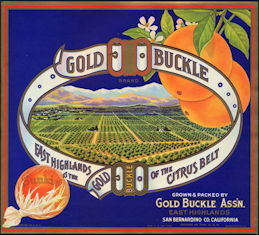 #ZLC338 - Gold Buckle Sunkist Orange Crate Label