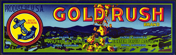 #ZLSG065 - Gold Rush Brand Grape Crate Label