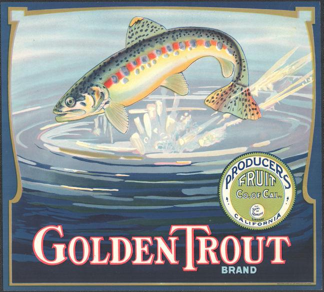 #ZLC470 - Super Rare Golden Trout Orange Crate Label - Lindsay, CA