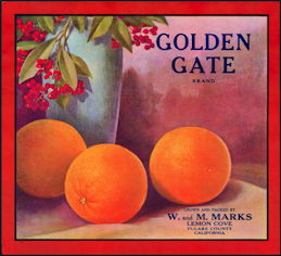 #ZLC397 - Rare Golden Gate Brand Orange Crate Label