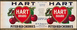 #ZLCA266 - Rare Hart Brand Pitted Red Cherries Can Label
