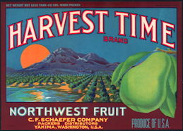 #ZLC438 - Harvest Time Pear Crate Label