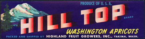 #ZLCA*028 - Hill Top Washington Apricots Crate Label