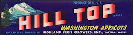 #ZLCA*028 - Hill Top Washington Apricots Crate Label