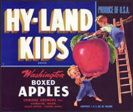 #ZLC294 - Hy-Land Kids Washington Apple Crate Label - Blue Version